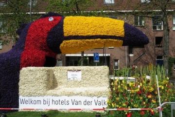 20170423_Bloemencorso_Haarlem003