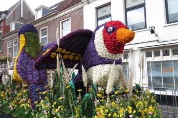 20170423_Bloemencorso_Haarlem013